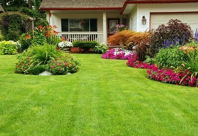 Lawn Care Planning: Highlight Your Lawn's Best Features