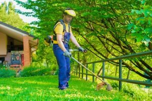Conway Lawn Care Professional