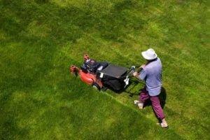 Conway SC Lawn Maintenance