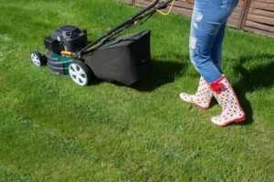 Conway Lawn Care