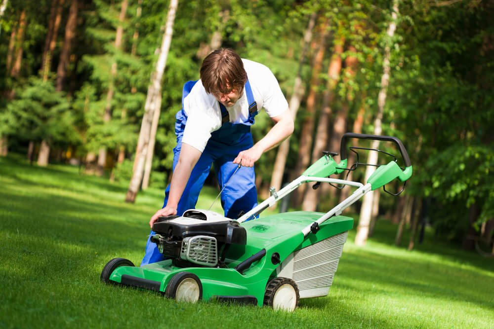 Guide to Lawn Care in the Winter