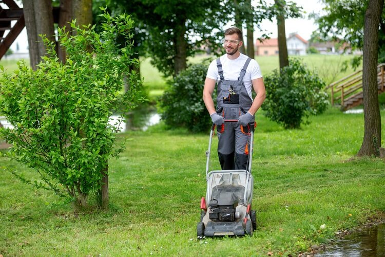 Lawn care Tips: Mow Your Way To Healthy Lawn This Summer