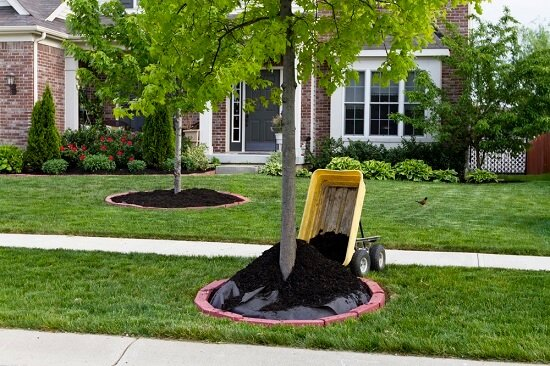 Lawn Care Tips: To Mulch Or Not To Mulch?