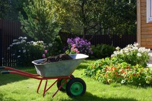 lawn care Conway
