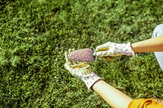 Lawn Care Guide To Fertilizing