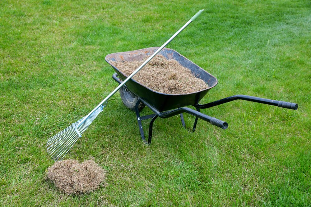 What To Know About Spring Lawn Care and Liquid Aeration