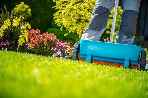 When is the best time to fertilize your lawn?