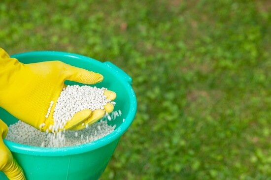 What is the best fertilizer to have for the summer months?