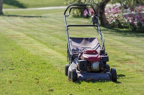Proper Lawn Maintenance During Long Hot Summer Days