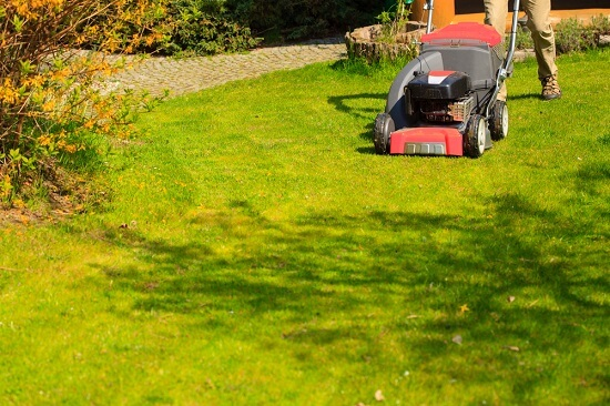 Need an Easy Fix For a Common Lawn Problem?