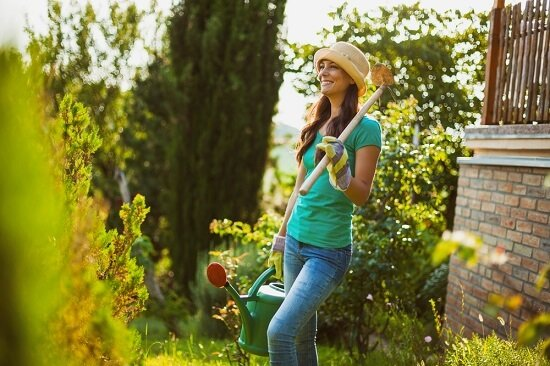 Lawn Care For A Dry Climate